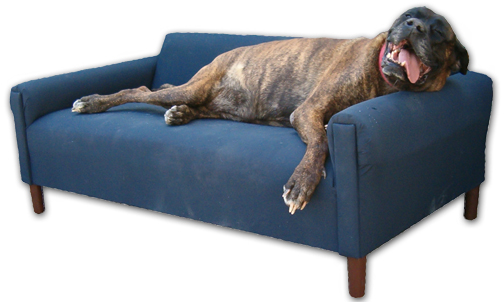 Modern_dog_bed_sofa_xxl