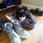 2017  1Cambridge Longstanton  (6)